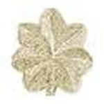 Hero's Pride Insignia - Pair of Major Leaf - Small - 3/4 - 2 Clutch