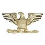 Hero's Pride Insignia - Colonel Eagle - Small - 3/4