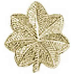 Hero's Pride Insignia - Major Leaf - Regular 1