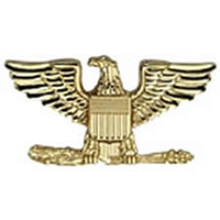 Hero's Pride Insignia - Colonel Eagle - Regular 1 - 2 Clutch